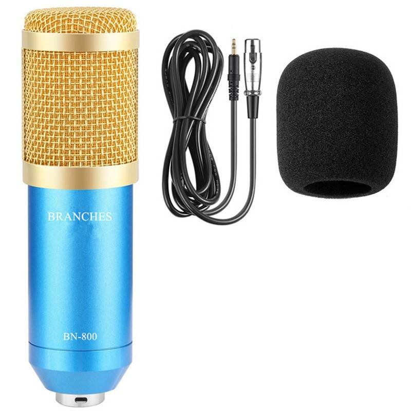 Professional Condenser Microphone